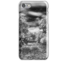 Where the path ends iPhone Case/Skin