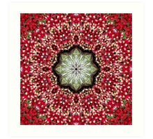 Radiating Red Radishes Mandala With Lettuce Accent Art Print