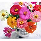 Zinnia Blooms Still Life by LouiseK