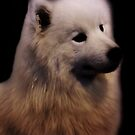 Samoyed Portrait by CreativeEm