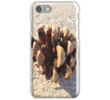 One Lonely Pinecone  iPhone Case/Skin