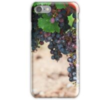 Niagara Vines iPhone Case/Skin