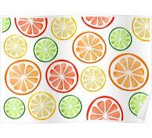 Citrus Fruit Slices Poster