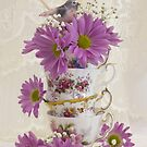 Tea Cups And Daisies  by Sandra Foster
