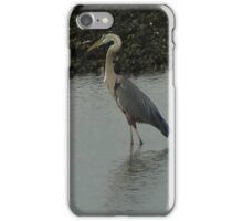 Water Bird iPhone Case/Skin