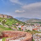 The castle on Ayasoluk Hill by Quixotegraphics