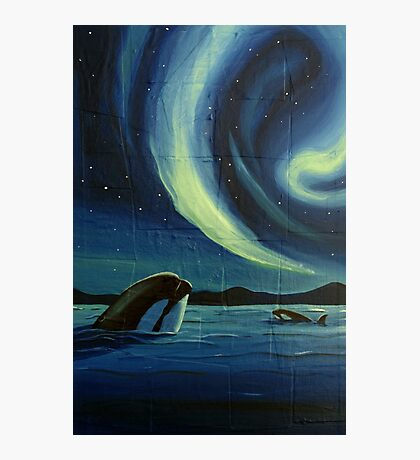 Whale Watching Photographic Print