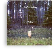 Brand New - Daisy Canvas Print