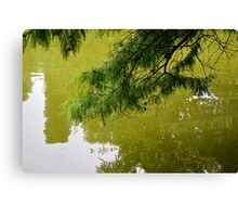 Tree branch leaning over a green lake. Canvas Print