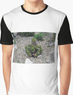 Bunch of cacti on gravel. Graphic T-Shirt