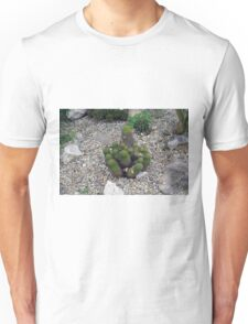 Bunch of cacti on gravel. Unisex T-Shirt