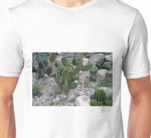 Cacti on gravel. Unisex T-Shirt