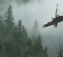 Battle for the Cedars by Skye Ryan-Evans