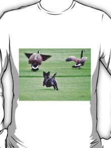 SWEETPEE CHASING CANADIAN GEESE OFF GOLF COURSE T-Shirt
