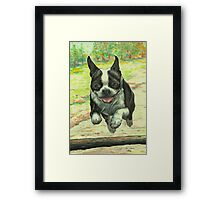 Leaping Boston Framed Print