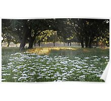 Summer meadow No. 4 Poster