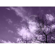 Purple Night - JUSTART ©  Photographic Print