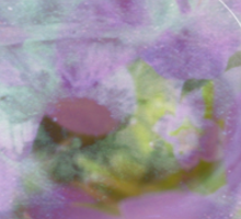 See the World through Flowers - JUSTART © Sticker
