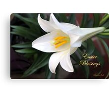 The Easter Lily ~ a Biblical Flower Canvas Print