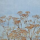 Hogweed - Almost Autumn - JUSTART © by JUSTART