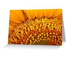 Floral Florets Greeting Card