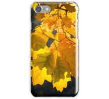CHORUS iPhone Case/Skin