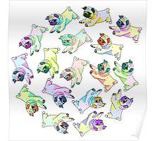 spiral pugs Poster