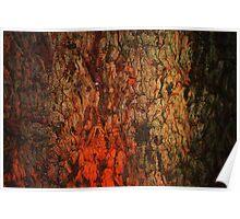 """Campfire""  bark abstract Poster"