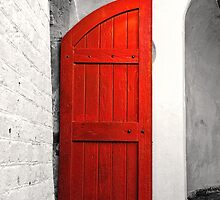 The Red Door by Fred McKie