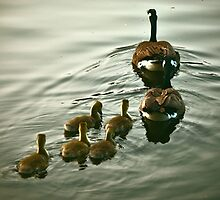 Family Outing by Dorothy  Pinder