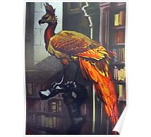 Harry Potter Fawkes Poster