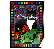 Black and White Cat in the Garden Poster