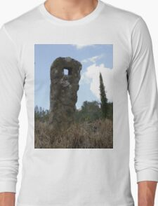 Natural Sculpture Long Sleeve T-Shirt