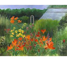Vermont Garden Photographic Print