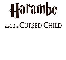 Harambe And The Cursed Child Photographic Print