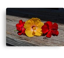 Yellow Hibiscus and Red Geranium  Canvas Print