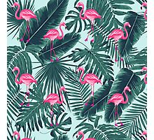 tropic abstract flamingo Photographic Print