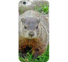 Ground hog iPhone Case/Skin
