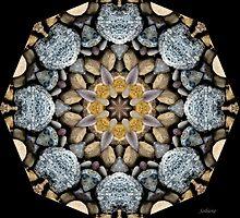 Rock Star by Rosemary Sobiera