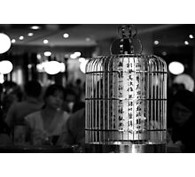 Poem In A Birdcage Photographic Print