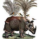 Robins Roosting On A Rhino by RichardSmith
