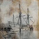 Mayflower by Jing3011