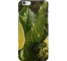Skunk Cabbages iPhone Case/Skin