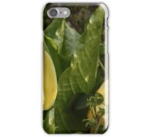 Skunk Cabbages iPhone Case/Skin