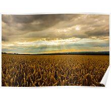 Shredded Wheat Poster