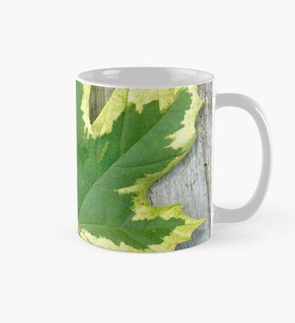 Maple leaf . Mug