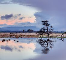 Yarra Glen flats flooding sunset by Ben  Cadwallader