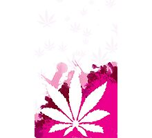 Pink Cannabis Photographic Print