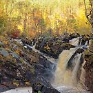 Rogie Falls,  Scotland in Autumn by Stephen Frost