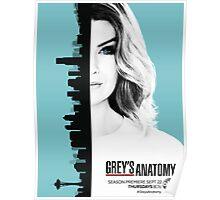 Grey's Anatomy Season 13 Poster Poster